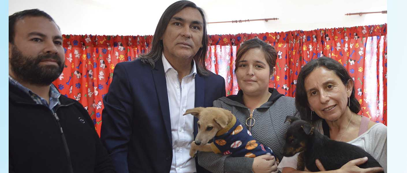 Continúa programa de marcaje con microchip para mascotas en Huasco.