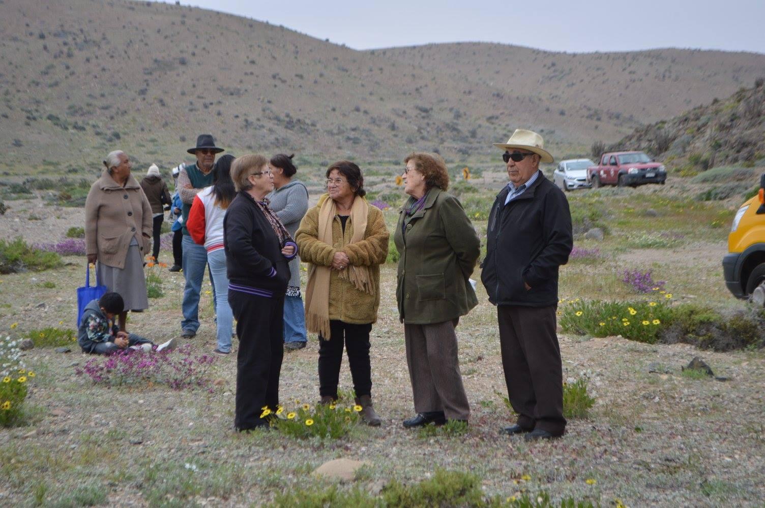 Municipio de Huasco realizará ruta del desierto florido abierto a la comunidad.