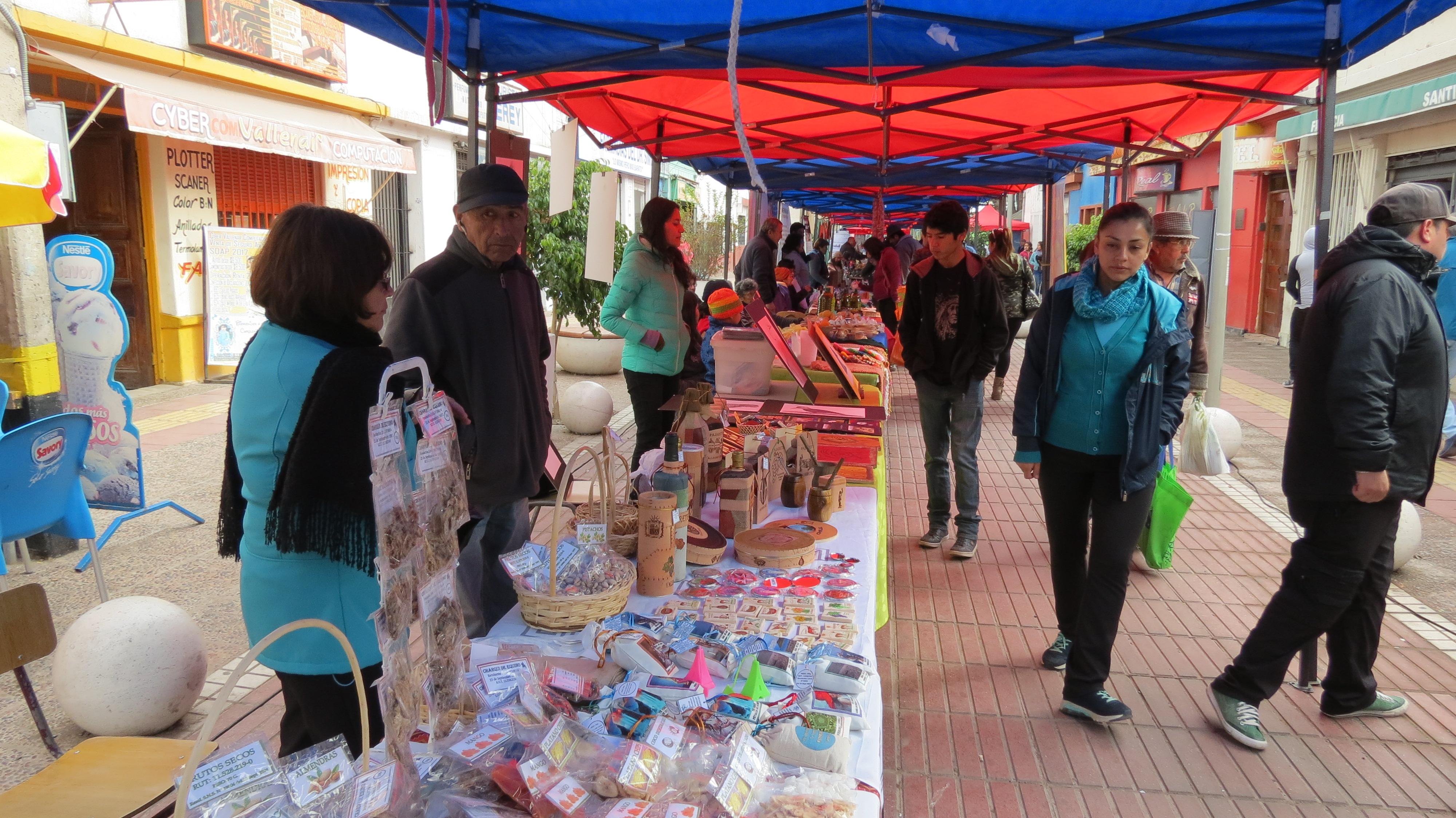 Vallenar y Huasco se unen en materia cultural.